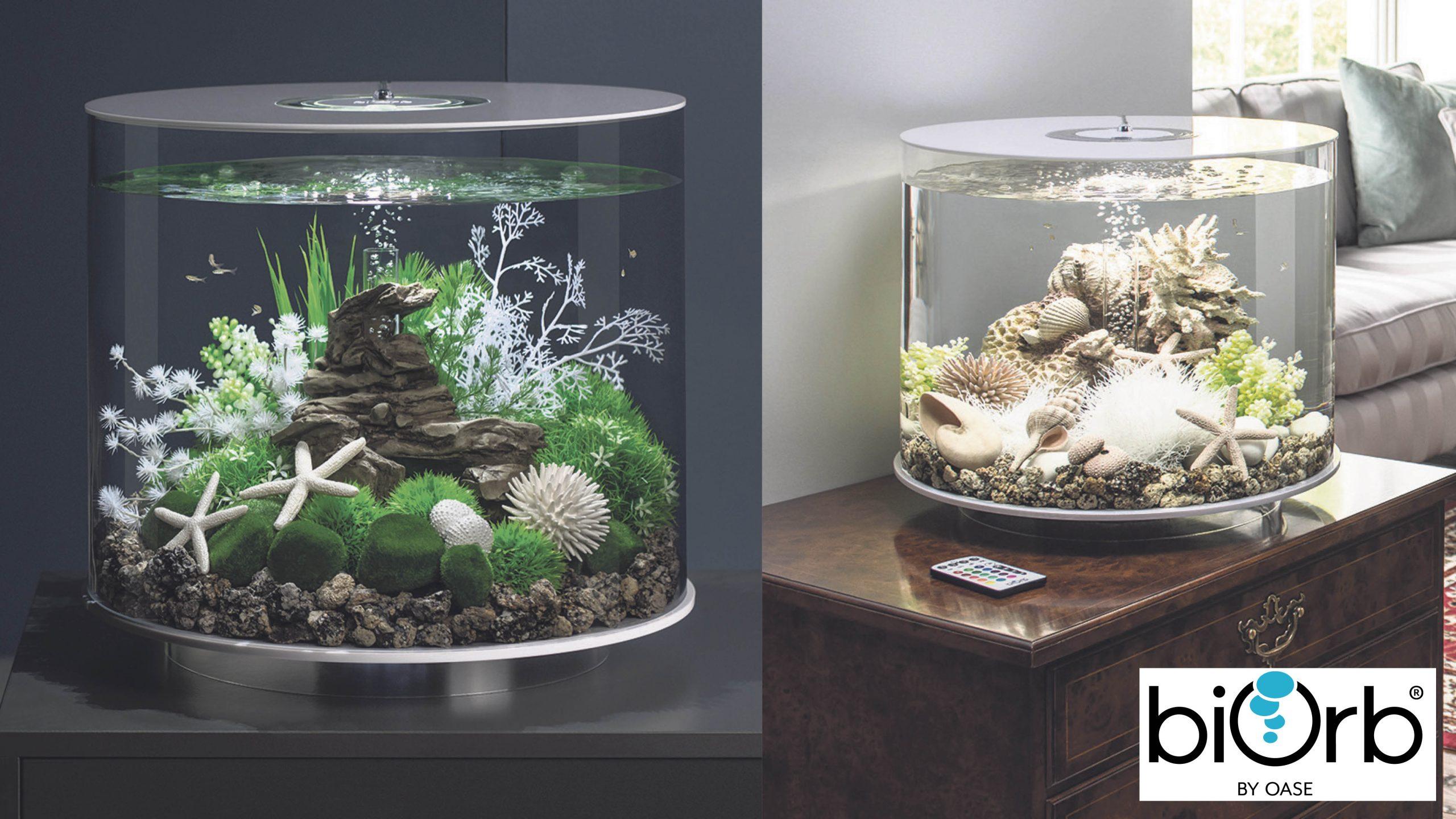 Win a stunning home aquarium Worth £200!