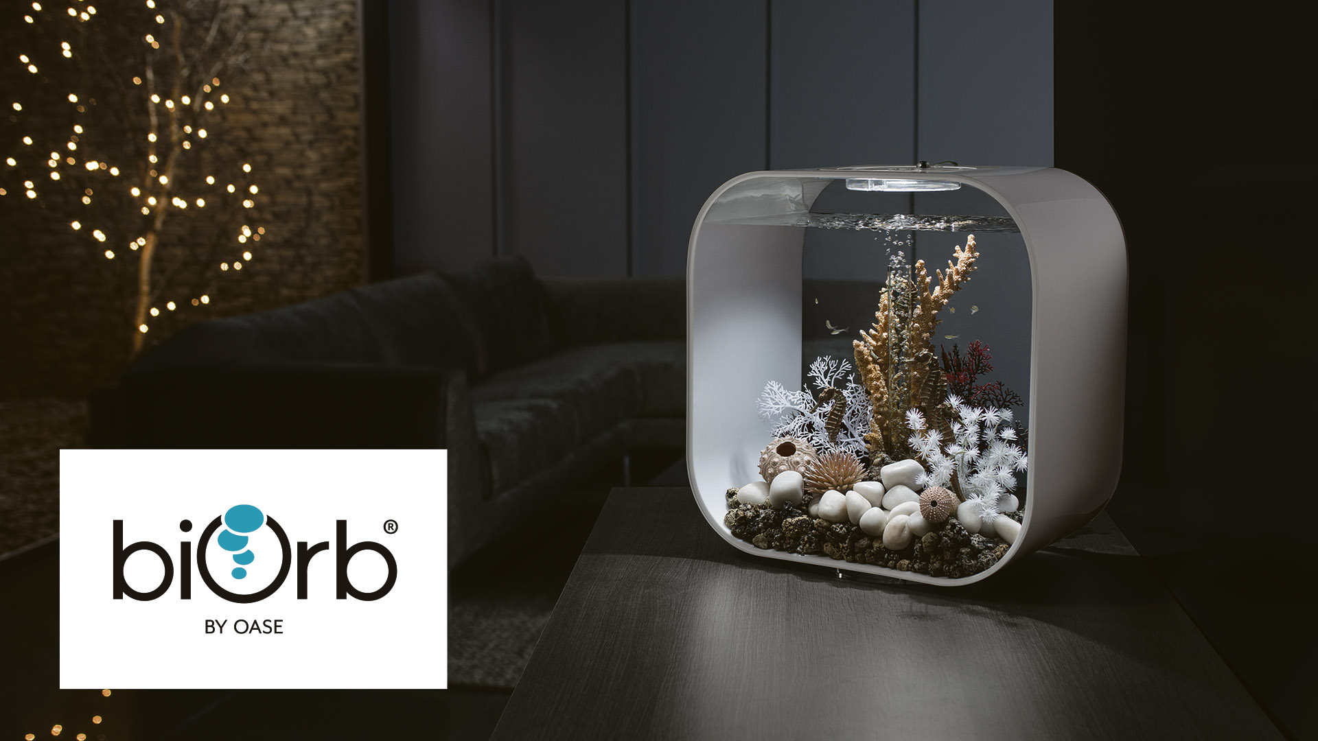 Win a 30 litre aquarium from biOrb Worth £200!