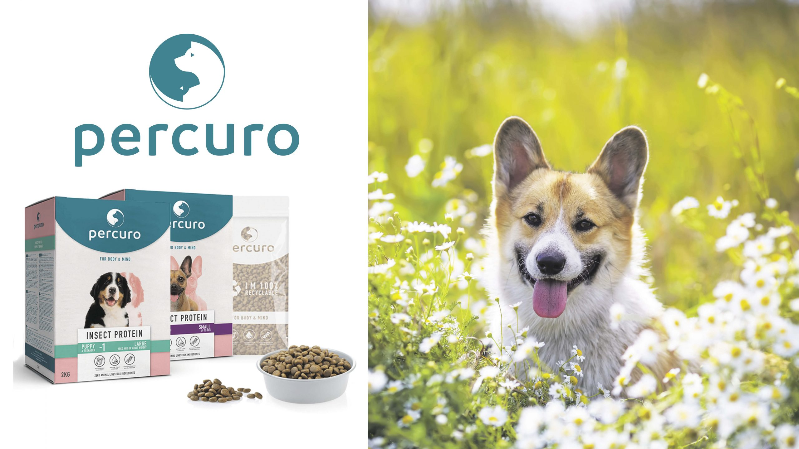 Win three months' worth of healthy, sustainable dog food Worth £160!