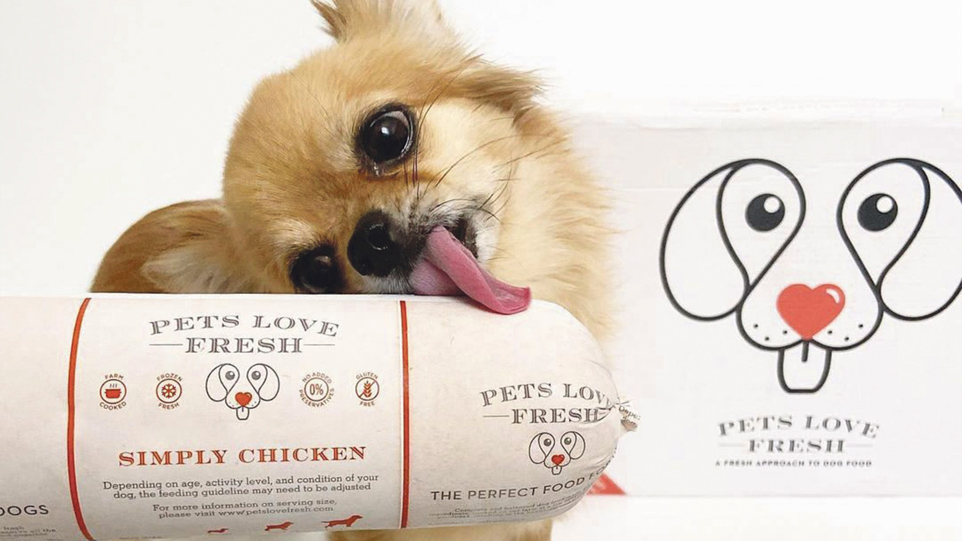Win six months' worth of dog food from Pets Love Fresh Worth £250!