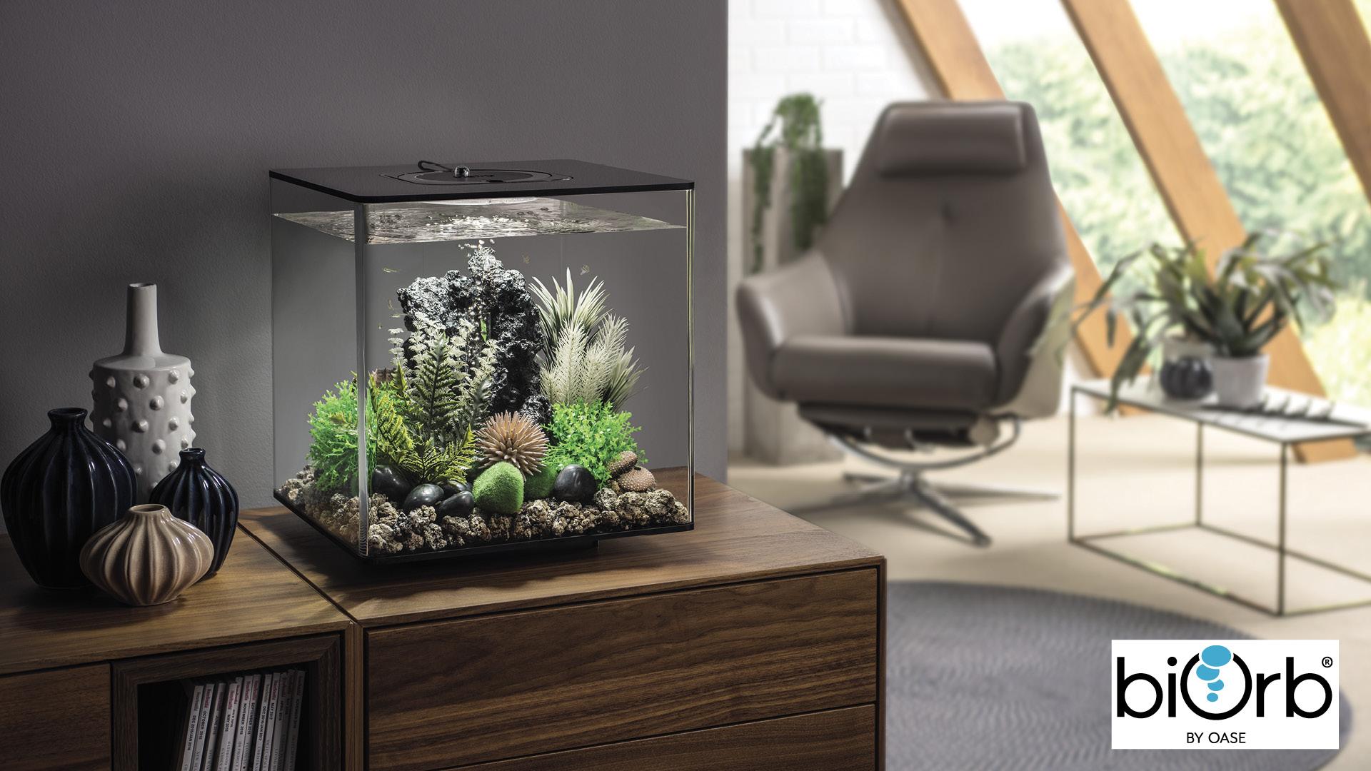 Win a biOrb CUBE aquarium Worth £224.99!
