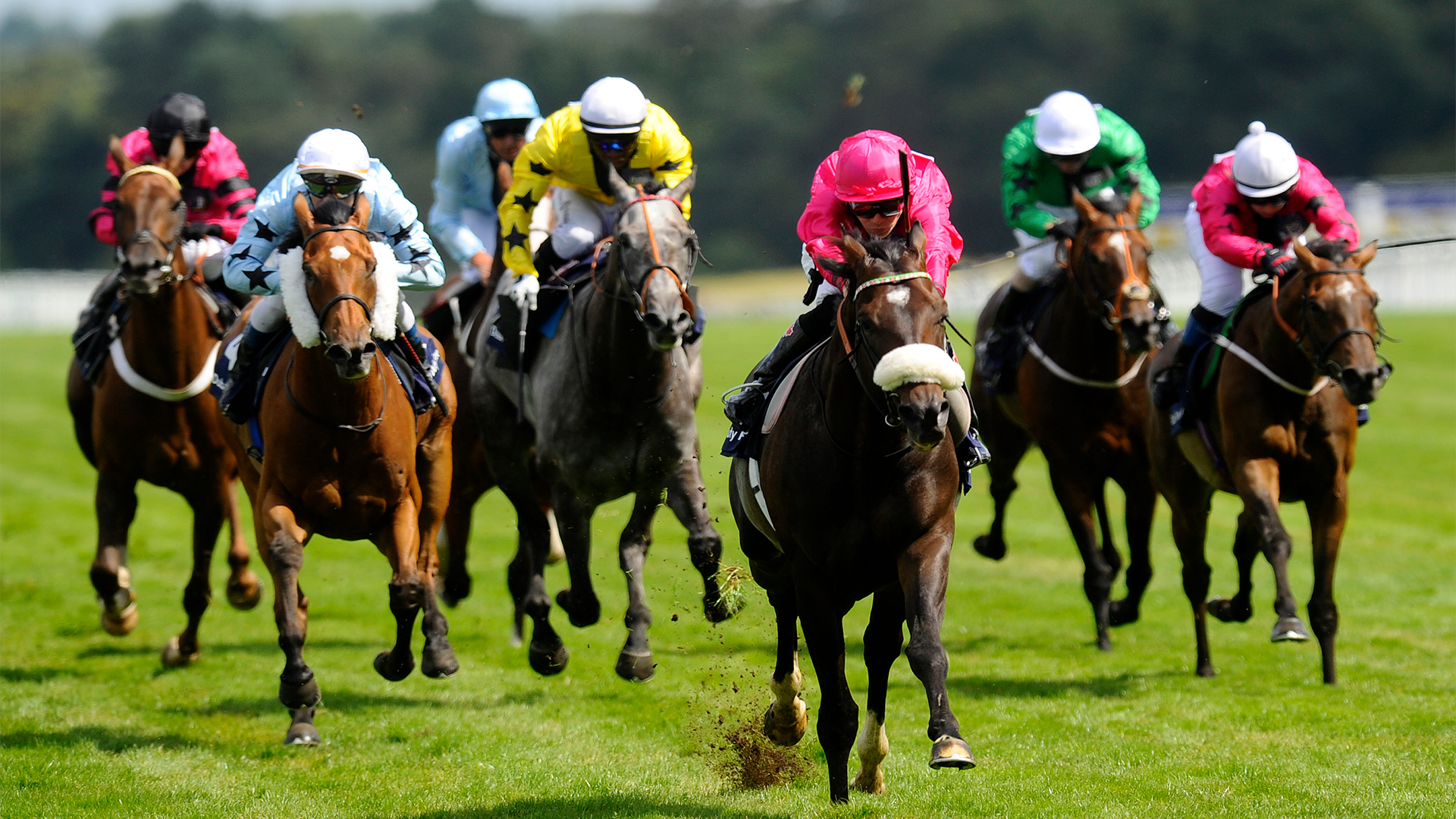 Win tickets to the Dubai Duty Free Shergar Cup on Saturday 7th August!