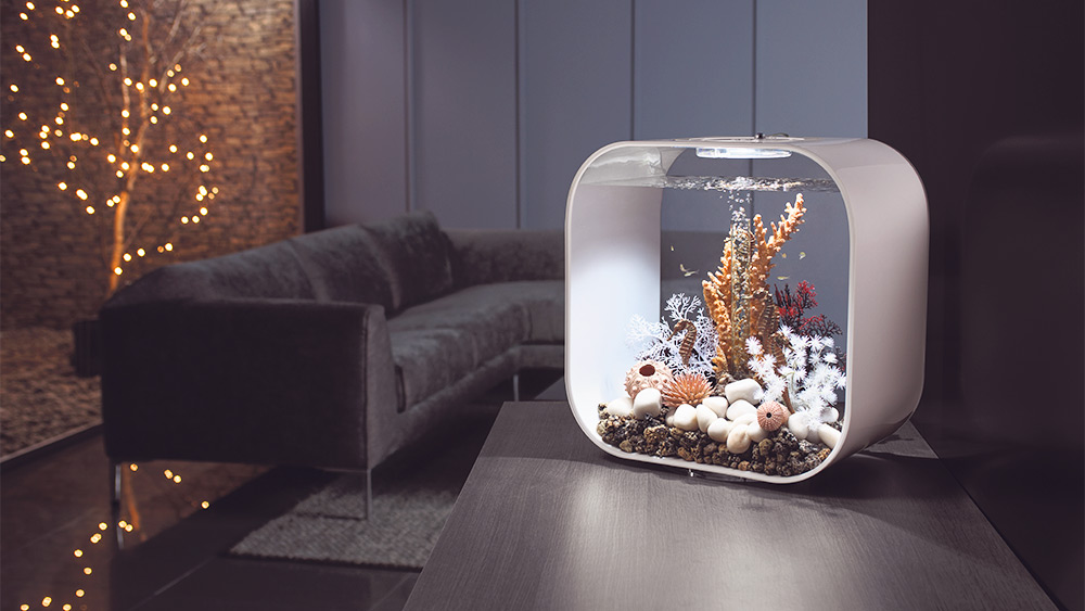 Win a biOrb LIFE 30 Aquarium Worth £209.99!