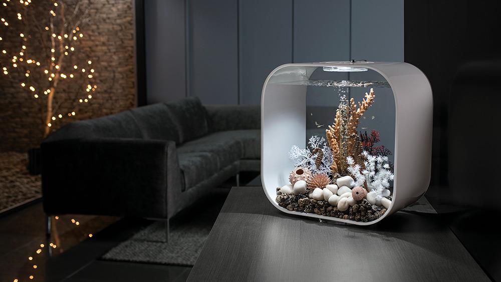 Win a biOrb LIFE 30 MCR aquarium for your home, Worth over £229!